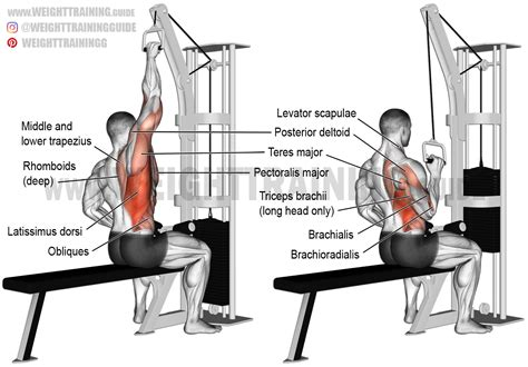 the gallery for gt lat pulldown machine exercises