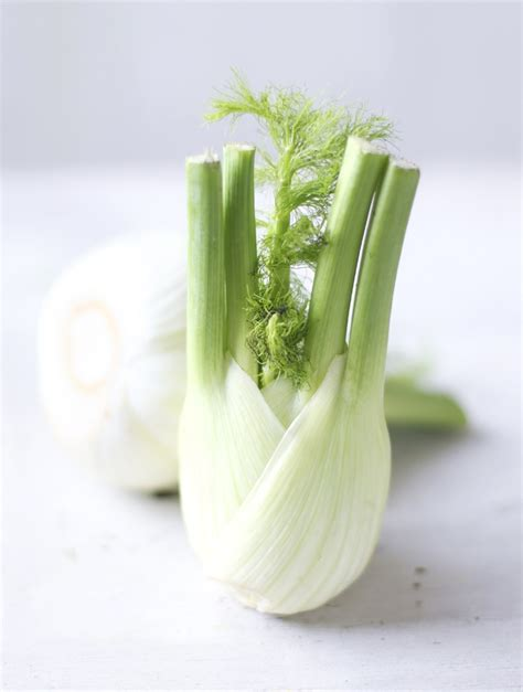 bulb fennel deliciousness pinterest
