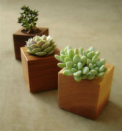 Wood Succulent Planter Modern Succulent Pot Gardener Gift Wooden Succulent Planter