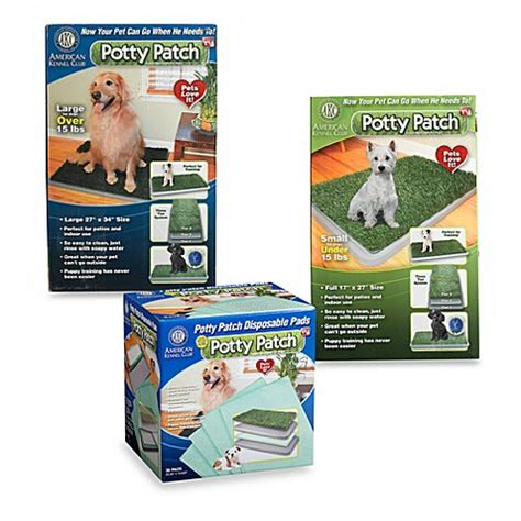 potty patch potty patch indoor washroom for dogs www bedbathandbeyond ca