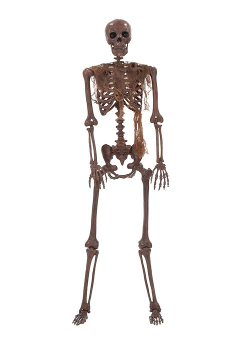 a skeleton lifesize decayed poseable skeleton