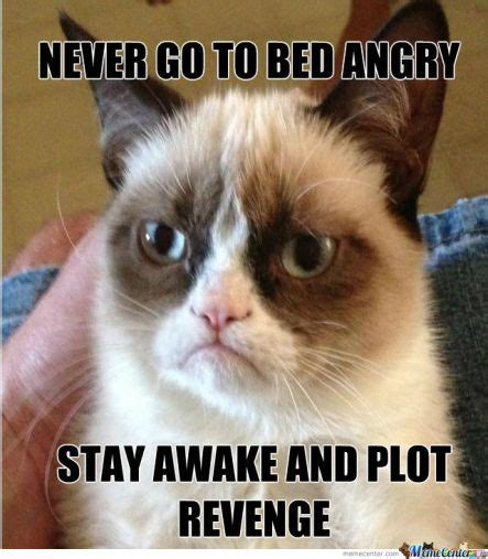 Revenge Memes - the best revenge is happiness no blog intended