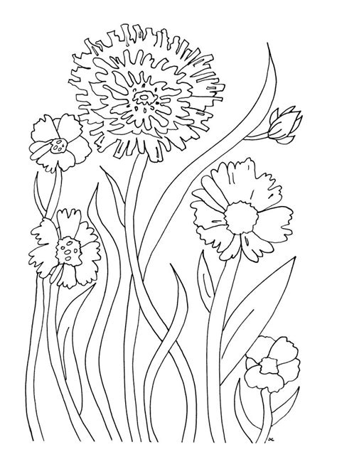 flower to color free printable flower coloring pages for best
