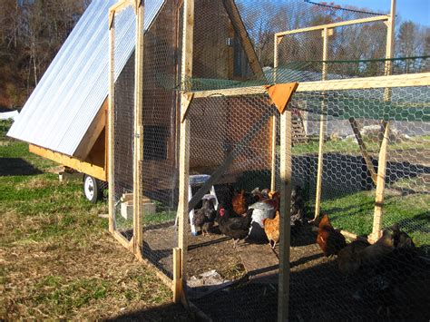Starting A Small Home Farm Key Considerations For Starting A Small Poultry Farm To