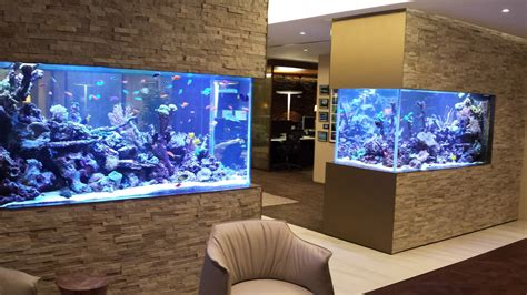 cuisine best ideas about wall aquarium on fish tank wall 30 incredibly awesome ideas to beautify your home with
