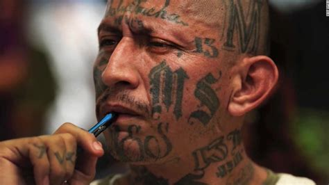 ms 13 gang tattoos ms 13 a concern for u s borderland talk
