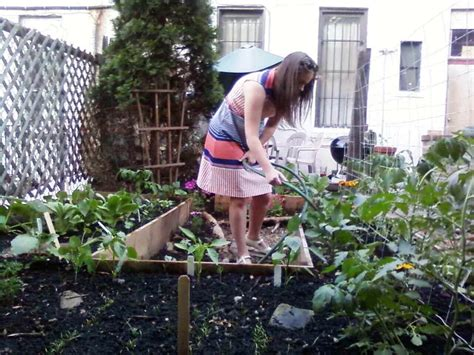 backyard farming on an acre backyard farming on an acre ideas