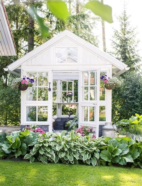 Windows For Garden Sheds by 25 Best Ideas About Window Greenhouse On