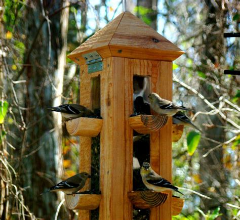Handmade Bird Feeder - handmade rustic cypress wood bird feeder finch feeder and