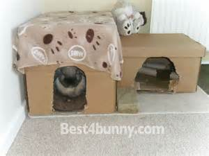 Cheap Rabbit Hutch Rabbit Toys Fun Ways To Keep Your Bunny Entertained