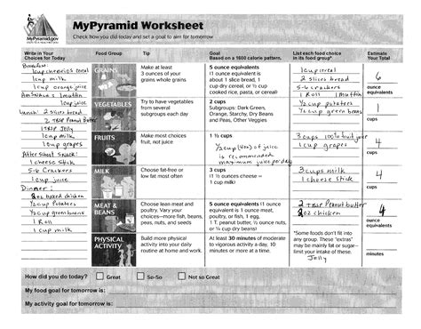 My Daily Food Plan Worksheet by Nutrition Requirements What Does A Kid Need Best