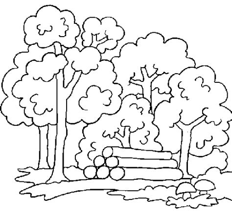Forest Background Coloring Pages Forest Coloring Page