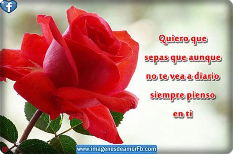 Imagenes Bonitas De Amor Con Dedicatorias | dedicatorias de amor bonitas imagui