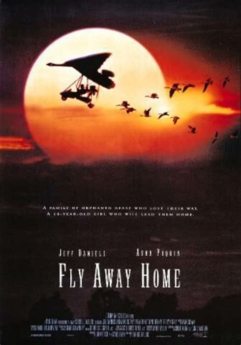 fly away home u daily info