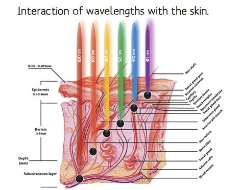 how does light therapy work how does led light therapy work