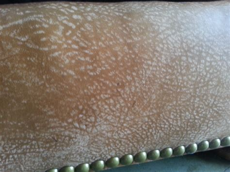white spots on leather couch white spots on leather sofa white spots on leather sofa