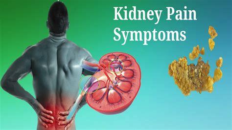 the kidney stone symptoms in women kidney stones symptoms women