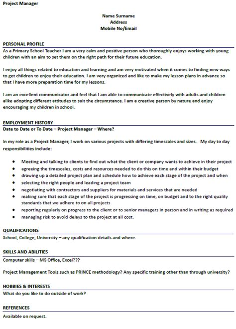 exle cv for young person project manager cv exle icover org uk