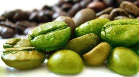 Biji Kopi Hijau ekstrak biji kopi hijau mu lenyapkan lemak pada tubuh health liputan6