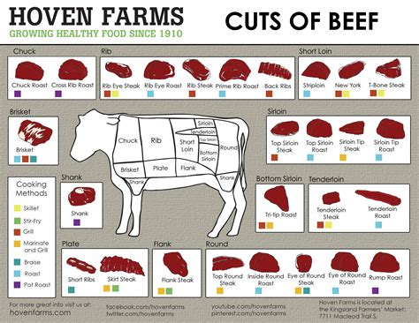 diagram of beef cuts beef cuts hoven farms