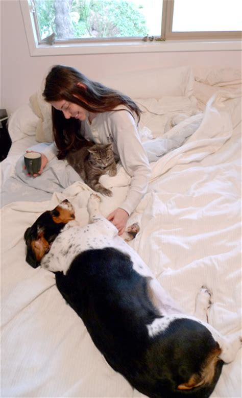 In Home Pet Sitting by Overnight Pet Sitting Pet Inc