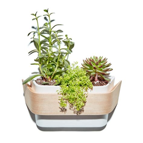ceramic wall planter indoor hanging wood ceramic wall planter