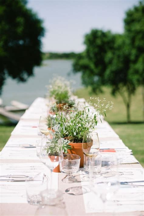 1000 ideas about plant centerpieces on potted