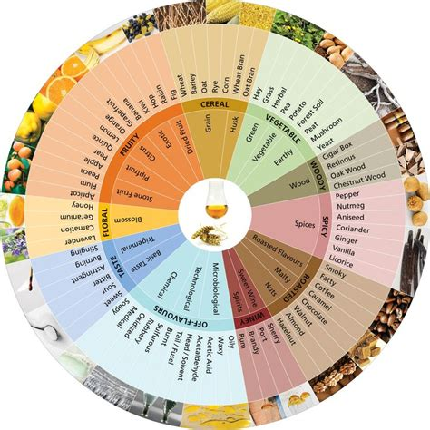 agroscope flavour wheel for whisky aromatherapy