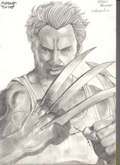 sketchbook x drawings wolverine sketch by littleleonard on deviantart