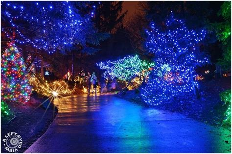 118 Best Brookfield Zoo Images On Pinterest Brookfield Brookfield Zoo Lights