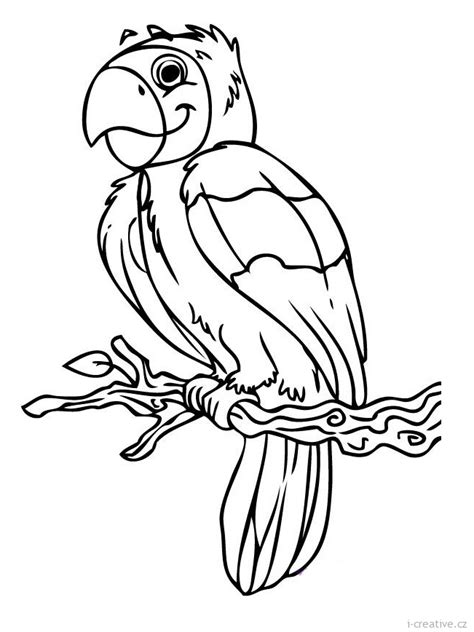 creative psalms coloring book coloring books parrot pictures az coloring pages