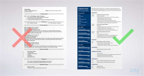 Resume For Sales by Sales Representative Resume Sle Writing Guide 20