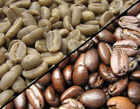 What gives coffee its distinctive color and flavor