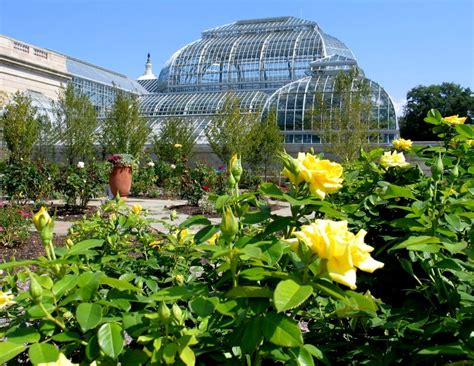 National Botanical Garden Washington Dc Jasna 2016 Agm Washington Dc