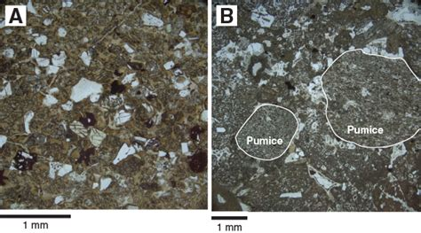 pumice thin section iodp publications volume 350 expedition reports