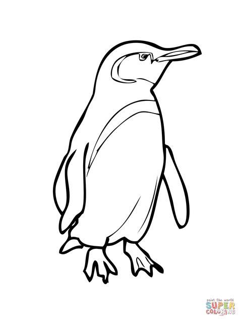 Galapagos Penguin Coloring Page | galapagos penguin coloring page free printable coloring