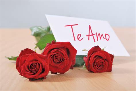 imagenes de rosas por san valentin banco de im 193 genes postales de amor para compartir el d 237 a