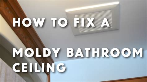 How To Remove Mildew From Ceiling In Bathroom by How To Get Rid Of Bathroom Ceiling Mold Www Stevemaxwell Ca