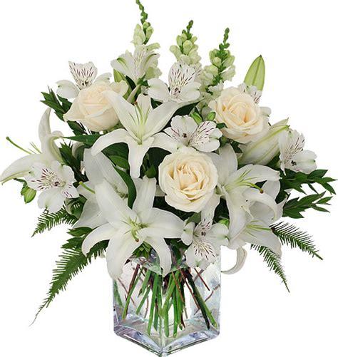 Benihbijibibit Bunga Tulip Blanc funeral flowers