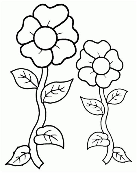 free coloring pages of summer flowers two flowers free printable coloring pages