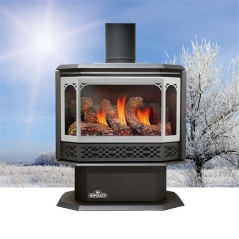 Napoleon Gas Fireplace Prices by Napoleon Gds50 Napoleon Gds50 Gas Stove Specifications Features And Product Details The