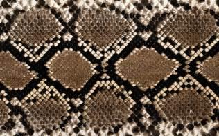 snake skin wallpapers