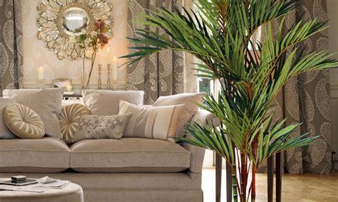 goldfruchtpalme wohnzimmer n 252 tzliche pflegehinweise f 252 r goldfruchtpalme deko