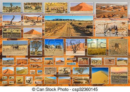 collage cuadros collage cuadros desierto sperrgebiet etosha esqueleto