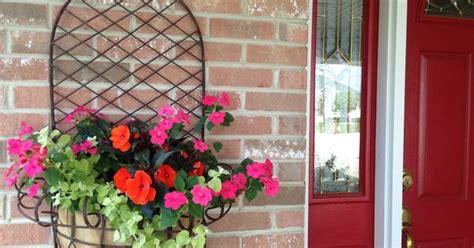 Outdoor Container Garden - new guinea impatiens creeping jenny container garden design flowers outdoor inspiration