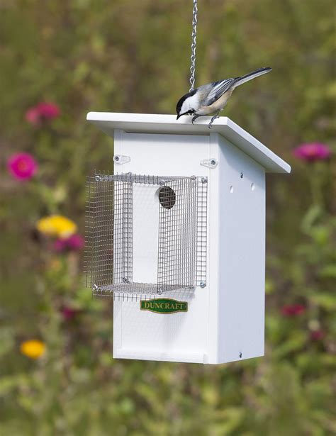 fly catcher bird house with noel guard a barrier that