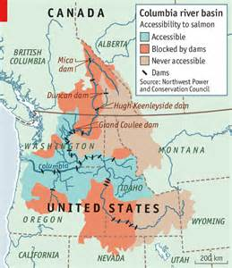 columbia river canada map salmon en route the economist