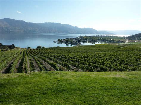 the bench kelowna viticulture au canada wikip 233 dia