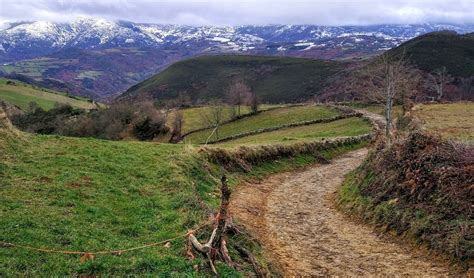 el camino spain camino de santiago the way spain for pleasure