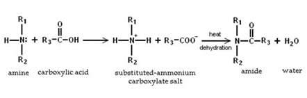 Protonation Of Amines File Amine Plus Carboxylic Acid Png Wikimedia Commons